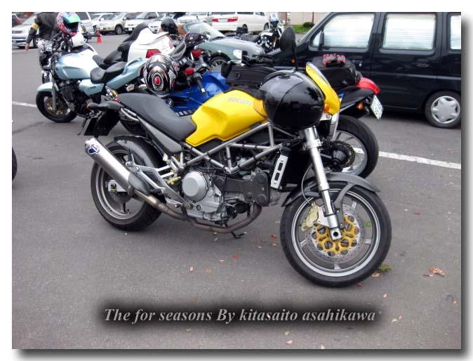 f0153018_2011576.jpg