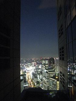 7月 パークハイアット東京 部屋からの夜景_a0055835_16394065.jpg