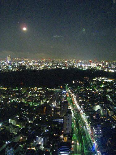 7月 パークハイアット東京 部屋からの夜景_a0055835_16583668.jpg