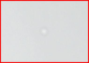 f0005838_193335.jpg