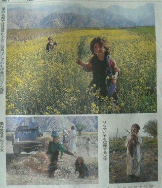アフガニスタンで蒔かれた種_f0019247_23302932.jpg