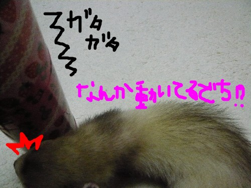 c0165472_22132258.jpg