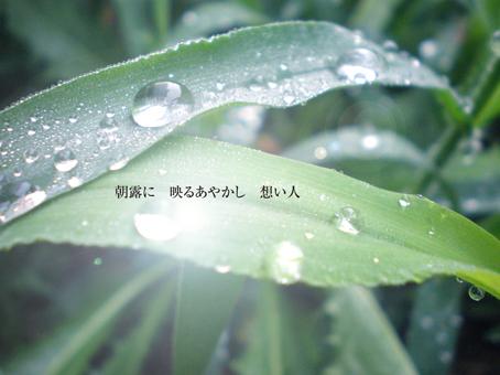 b0146278_21321592.jpg