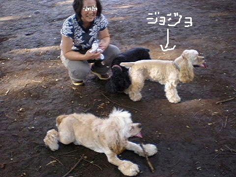 f0171803_9145867.jpg