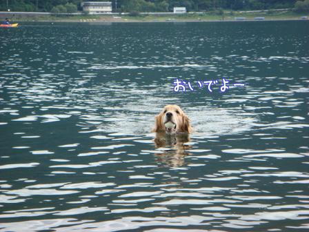 西湖でハナちゃんの初泳ぎ成るか!(その2)_f0064906_20125090.jpg