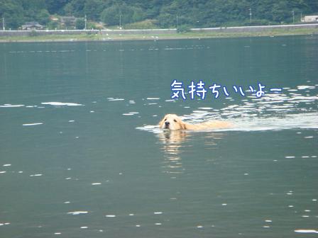 西湖でハナちゃんの初泳ぎ成るか!(その2)_f0064906_2013152.jpg