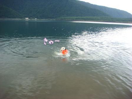 西湖でハナちゃんの初泳ぎ成るか!(その2)_f0064906_20152186.jpg