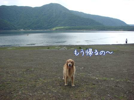西湖でハナちゃんの初泳ぎ成るか!(その2)_f0064906_20235697.jpg