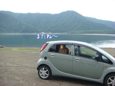 西湖でハナちゃんの初泳ぎ成るか!(その2)_f0064906_20242076.jpg