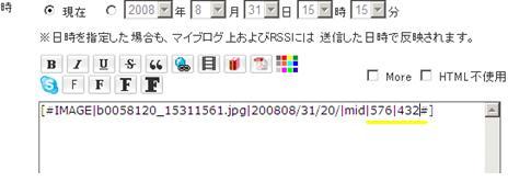 b0058120_2505329.jpg