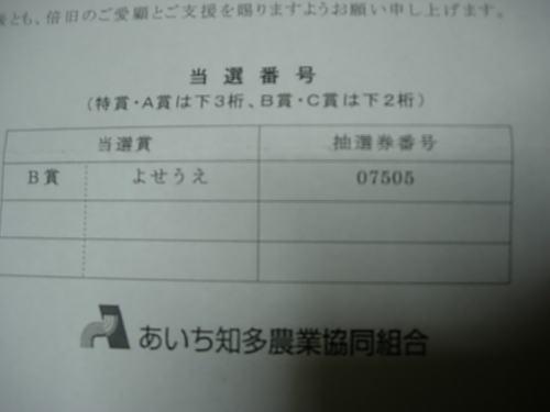 b0136683_1913797.jpg