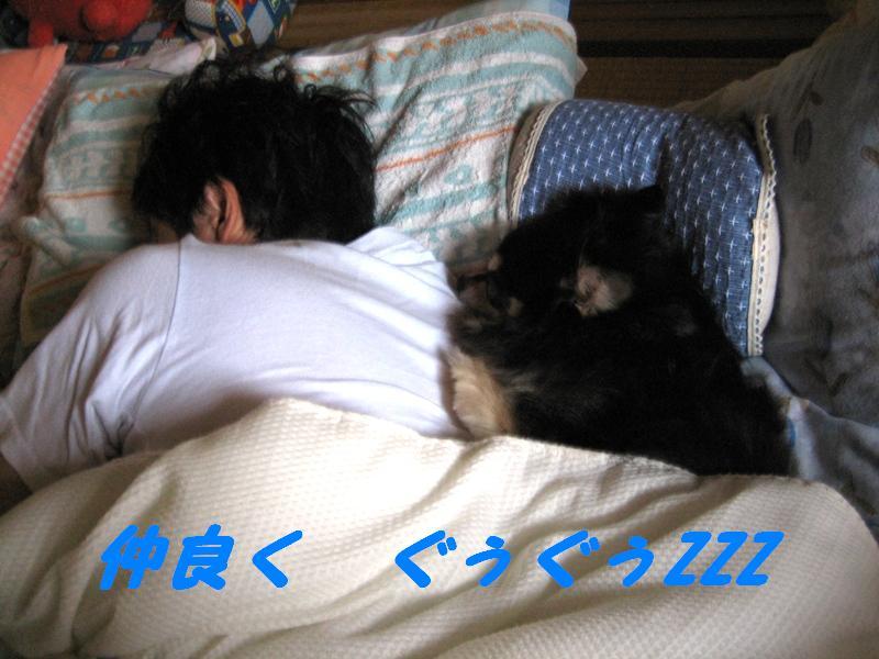 b0150088_20105897.jpg