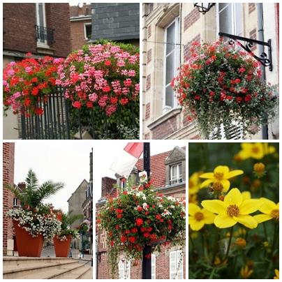 花の有る町「Noyon」♪_c0090198_1421133.jpg