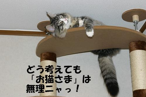 f0141800_0443823.jpg