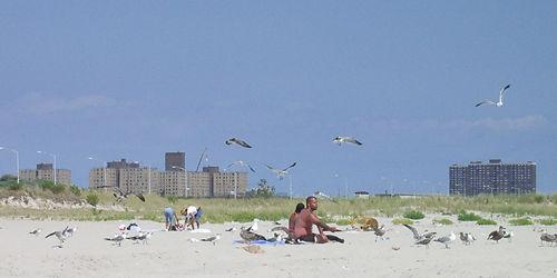 夏の終わりのビーチ part1_c0064534_2227661.jpg