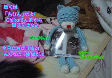 d0139352_001344.jpg