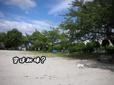 f0129214_1422123.jpg