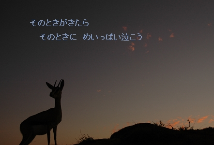 e0146990_2011155.jpg