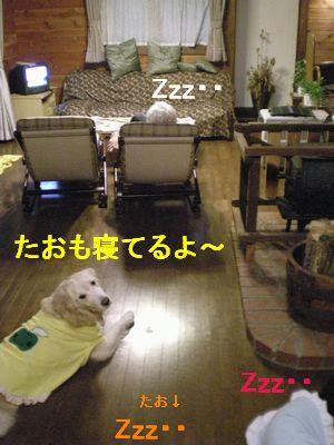 f0109202_11274988.jpg