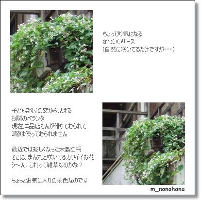 e0136420_17223997.jpg