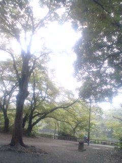 散歩_f0064823_9381964.jpg