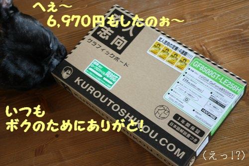 f0166032_15225089.jpg