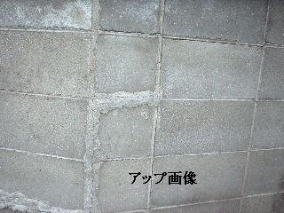f0031037_19481047.jpg