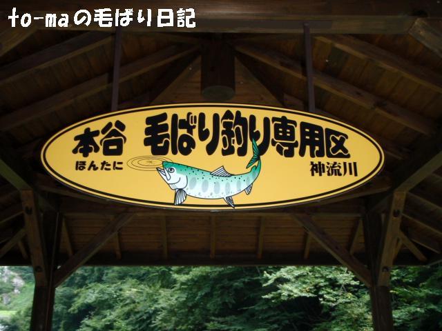 f0137709_2010355.jpg