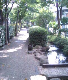 散歩。_a0039720_21581569.jpg