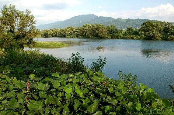 川のある風景_b0093754_23503459.jpg