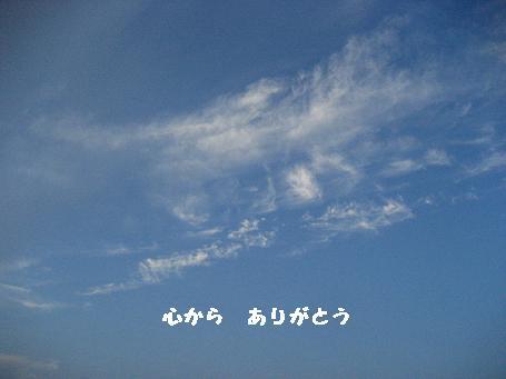 b0135560_11212399.jpg