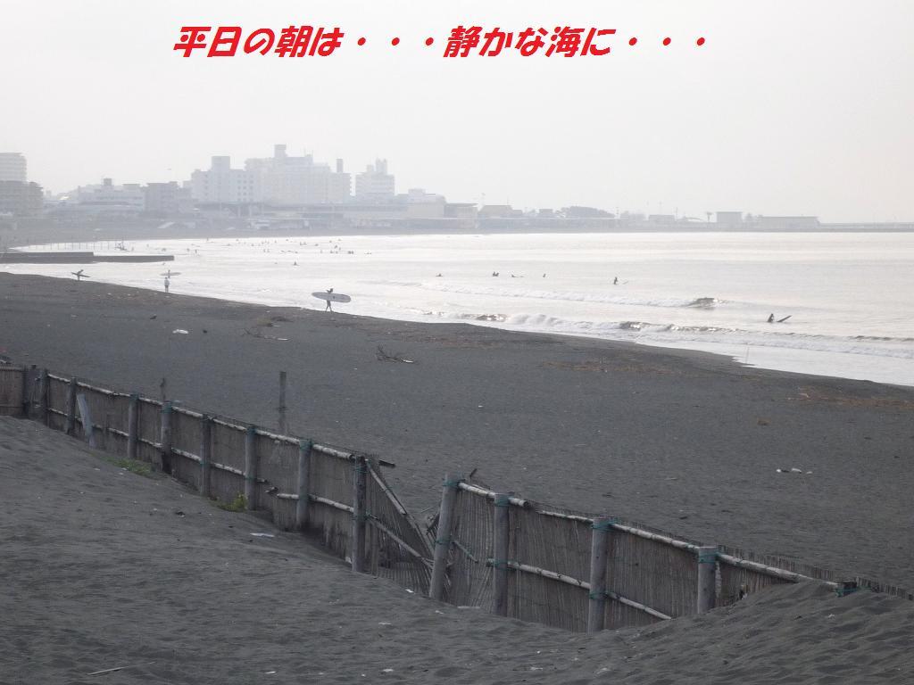 a0104464_1393588.jpg