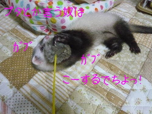 c0165472_2215499.jpg