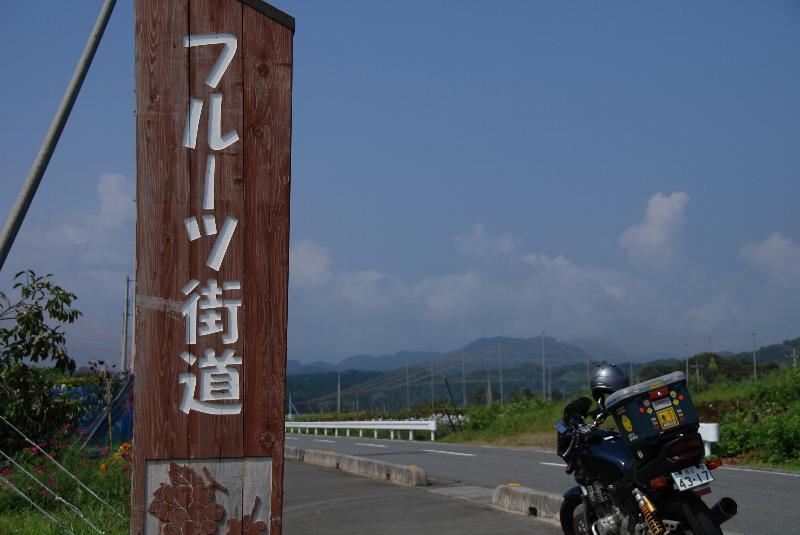 フルーツ街道の案山子_e0124594_2395864.jpg