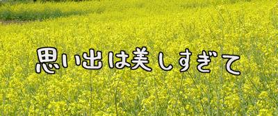 f0105741_832294.jpg