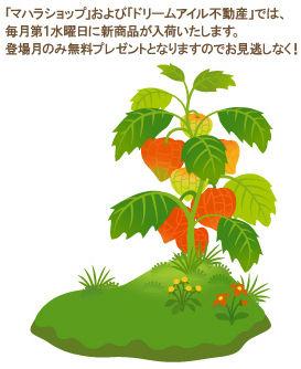 f0108346_20261473.jpg