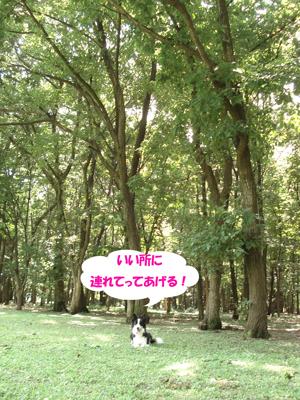 f0132070_737276.jpg