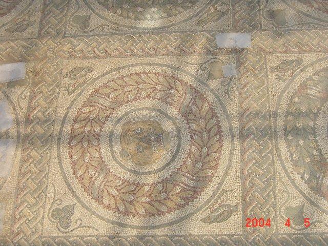 f0110377_19382528.jpg