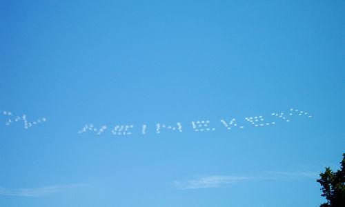 Sky Typing_c0064534_212916100.jpg