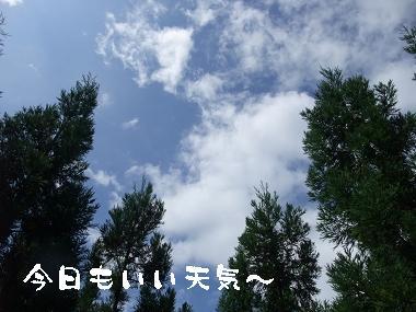 e0126046_0202555.jpg