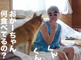 b0057675_10153165.jpg