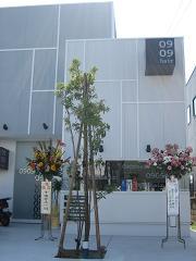 祝 開店!!!_f0176184_14224916.jpg