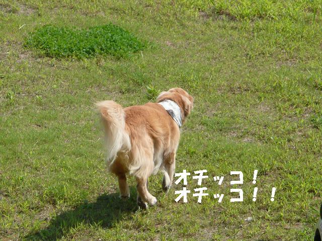 f0114128_15245014.jpg