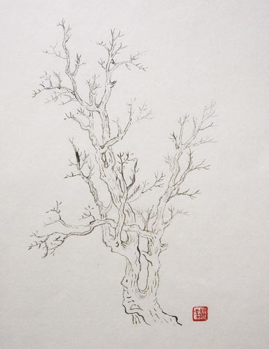 『芥子園画伝』 樹法⑯_c0160745_20135747.jpg