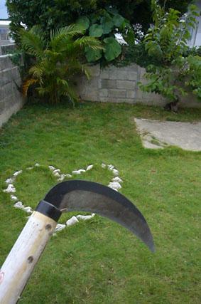 mowing._c0153966_19272998.jpg