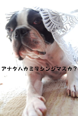 c0092787_131031.jpg