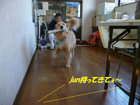 f0114128_108024.jpg