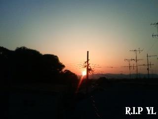 d0020139_030313.jpg