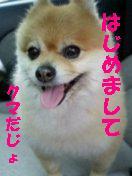 c0179136_23501839.jpg