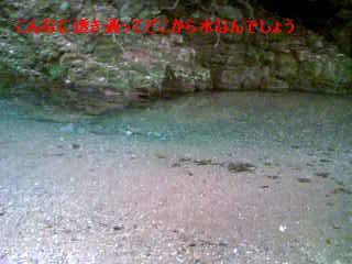 b0148945_2236439.jpg